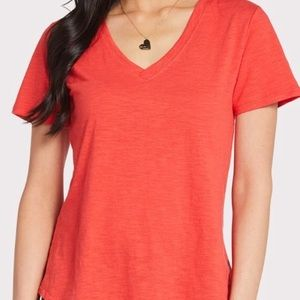 Z Supply V Neck Tee